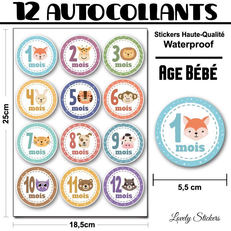 Stickers Age bébé de 1 à 12 mois