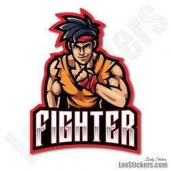 4 Stickers eSport Fighter