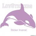 Stickers Orque - Décoration intérieur en Vinyle - Nombreux coloris